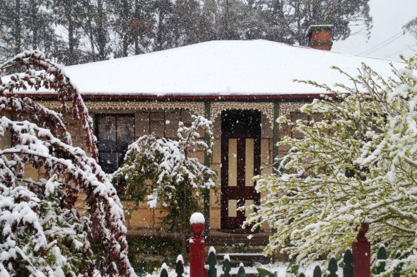 You may be lucky to experience snow at Brigadoon as this 2012 photos shows.