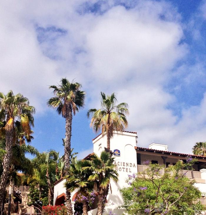 hacienda trees