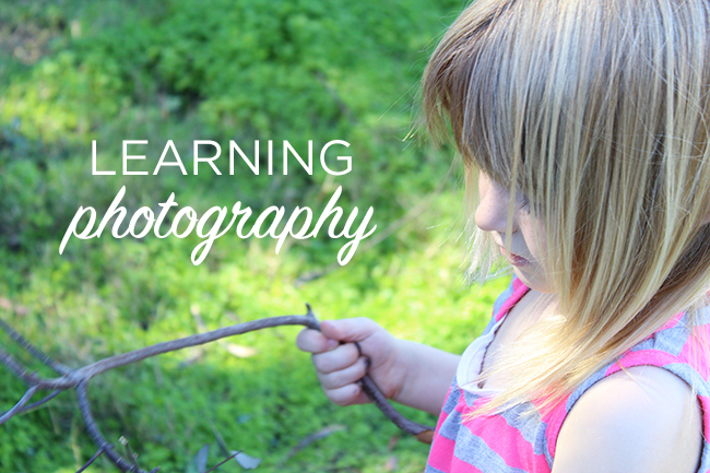 Learning Photography with a DSLR