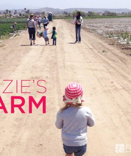 Suzie's Farm : Summer Camps #SanDiego