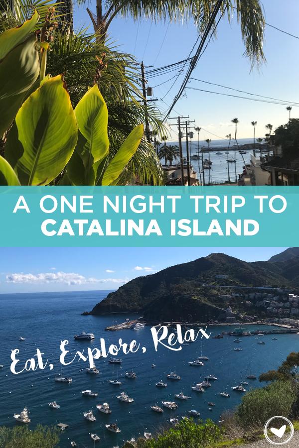 A One Night Trip to Catalina Island