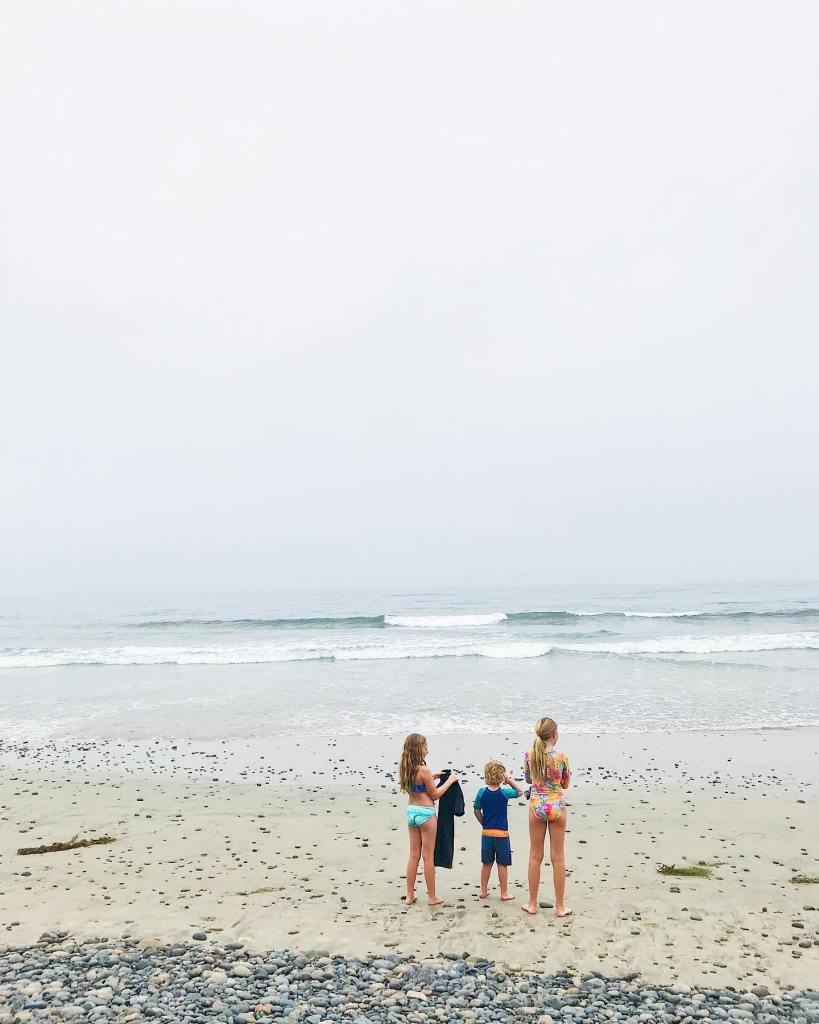 Carlsbad State Beach Waves