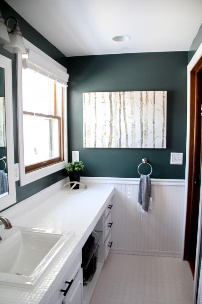 Modern Bathroom with Dark Painted Walls