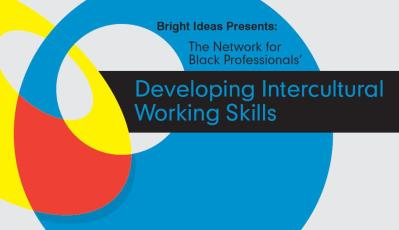 This image has an empty alt attribute; its file name is developing-intercultural-working-skills-logo.jpg