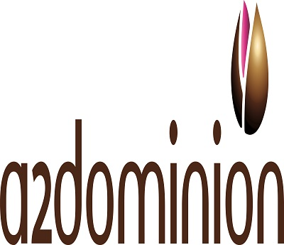 An Interview with the A2Dominion team