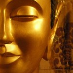 Meditation and buddhism course