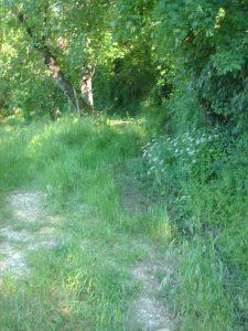 trail umbria