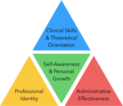 A diagram containing four triangles listing the four elements of the clinical training triangle