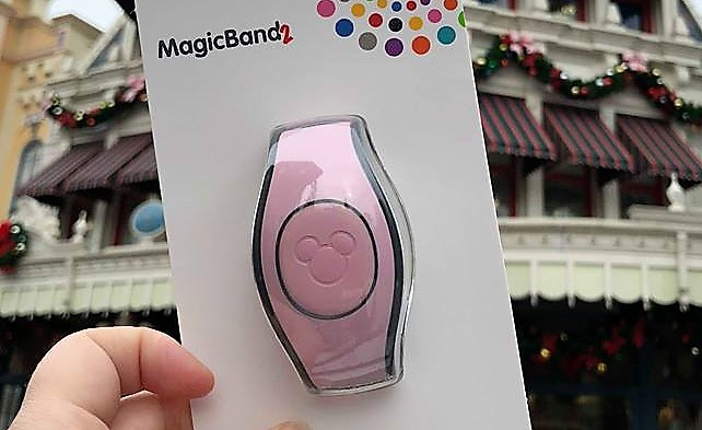 Pink Magic Band