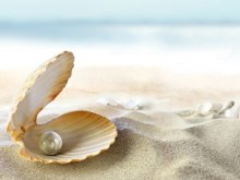 bigstock-An-open-shell-with-a-pearl--25581893