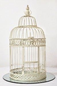 Urne cage à oiseaux