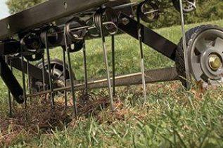 brinlydethatch 300x200 - Do You Want a Healthy Lawn? Then Dethatch It