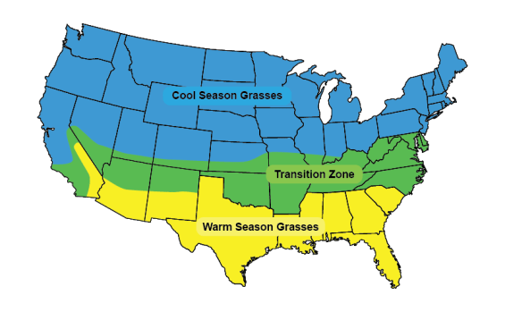 grassMAP - Do You Want a Healthy Lawn? Then Dethatch It