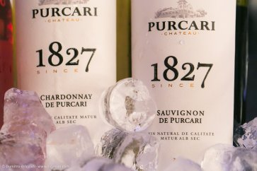 vernisajul-vinului-vii-103