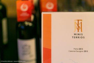 vernisajul-vinului-vii-71
