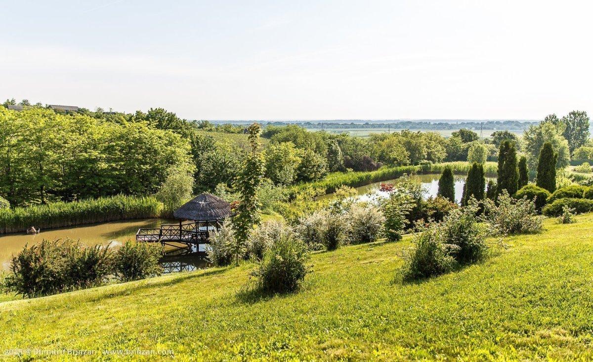 Purcari Estate - View of the Lakes