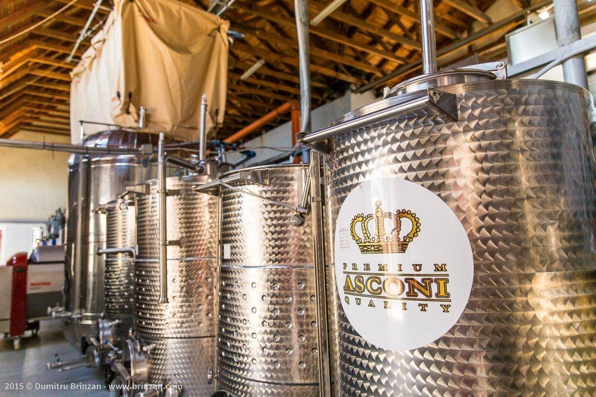 Asconi Winery in Puhoi Village, Moldova