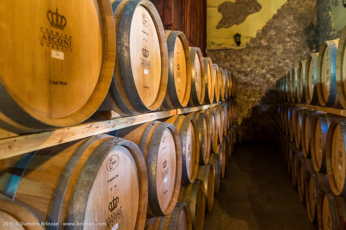 Asconi Winery in Puhoi Village, Moldova - American Oak Barriques