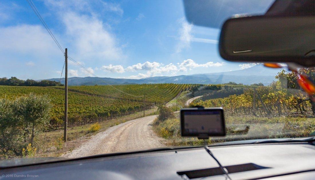 2016-podere-le-ripi-winery-montalcino-2