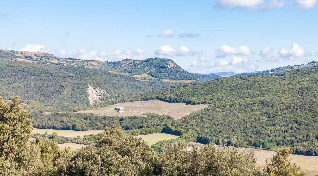 2016-podere-le-ripi-winery-montalcino-31
