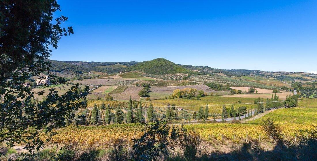 2016-podere-le-ripi-winery-montalcino-37