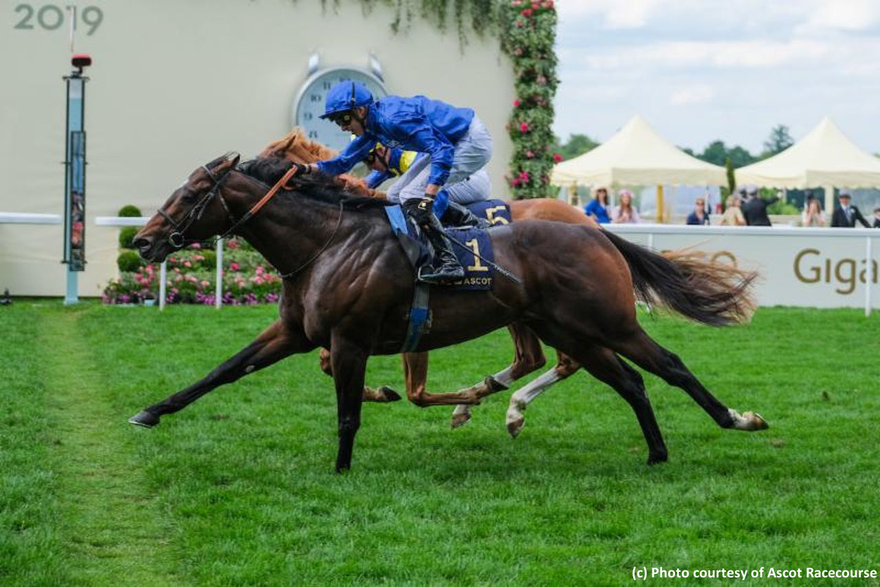 Royal Ascot Day 5 Recap Blue Point Turns Historic Double