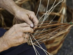 willow weaving