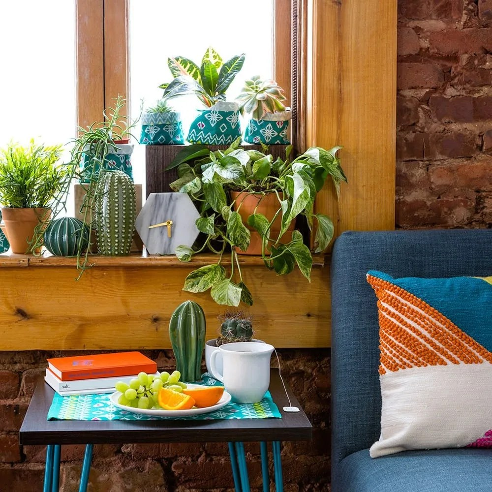 Use This IKEA Hack to Spruce Up Your Plant Shelfie