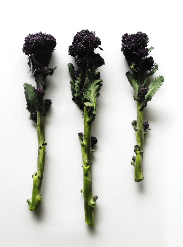 purple sprouting broccoli with Stilton sauce from britinthesouth.com