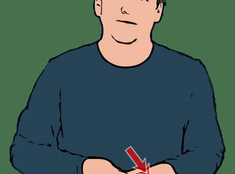 British Sign Language Dictionary British Sign Language