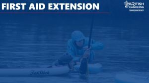 Faid Extension