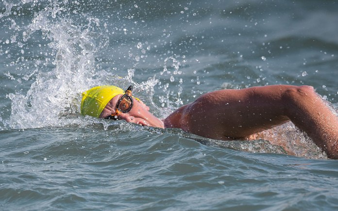 andrew rees swim english channel