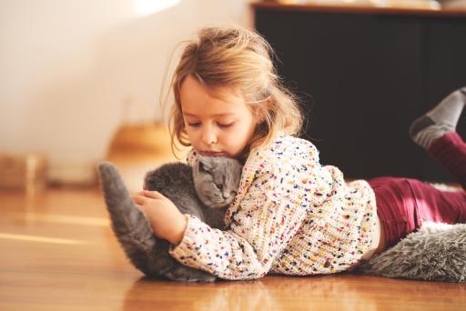 como entregamos a nuestros gatitos