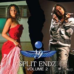 Ny - Split Endz Volume 2