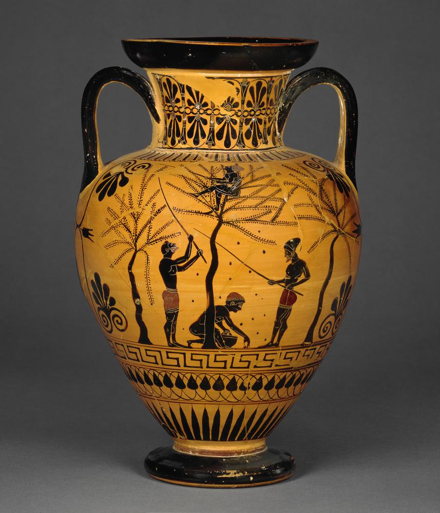 Pottery: black-figured amphora showing a scene of olive-gathering. A naked youth seated in a tree shakes down olives with sticks. Two bearded figures beat the trees with sticks, and a naked youth collects the fallen olives in a basket. The other side show
