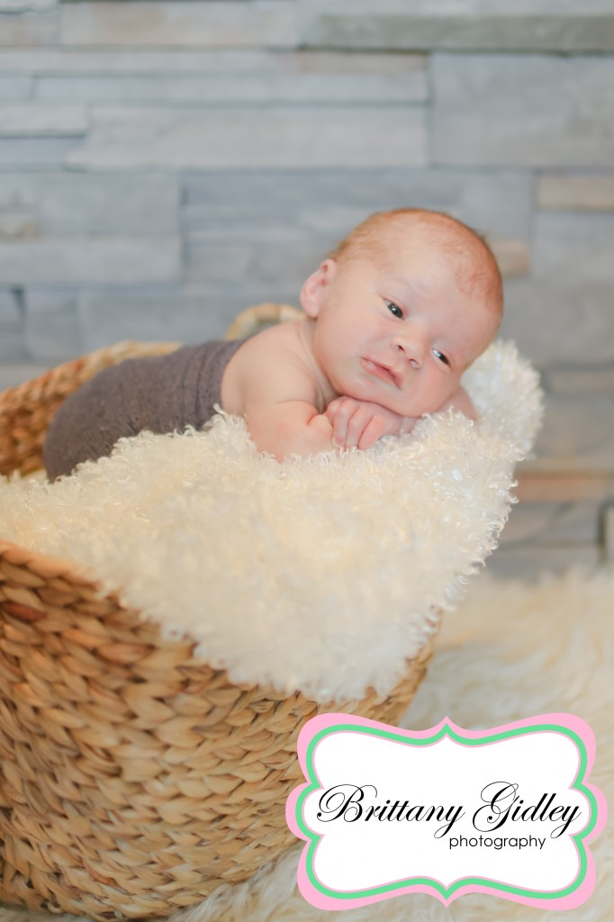 Newborn Photographer Cleveland Ohio | Brittany Gidley Photography LLC