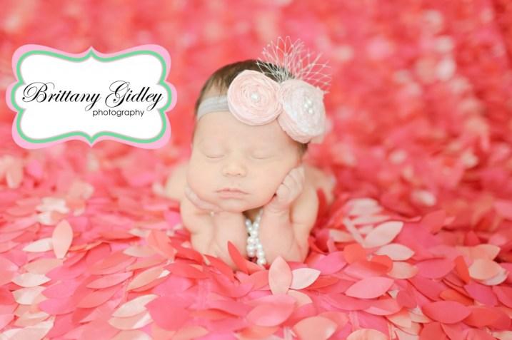 Newborn Photography Cleveland | Brittany Gidley Photography LLC