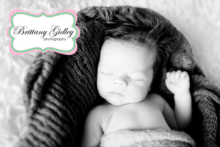 Newborn Baby Boy   Brittany Gidley Photography LLC