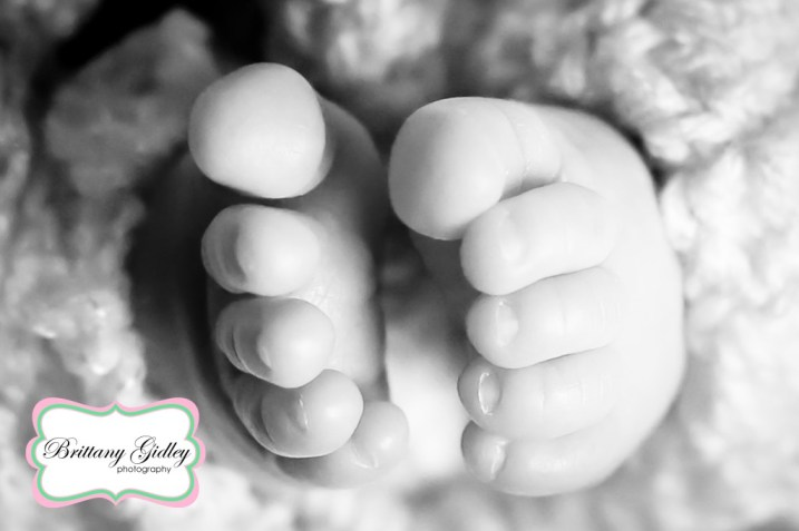 Best Professional Newborn Photographer | Brittany Gidley Photography LLC