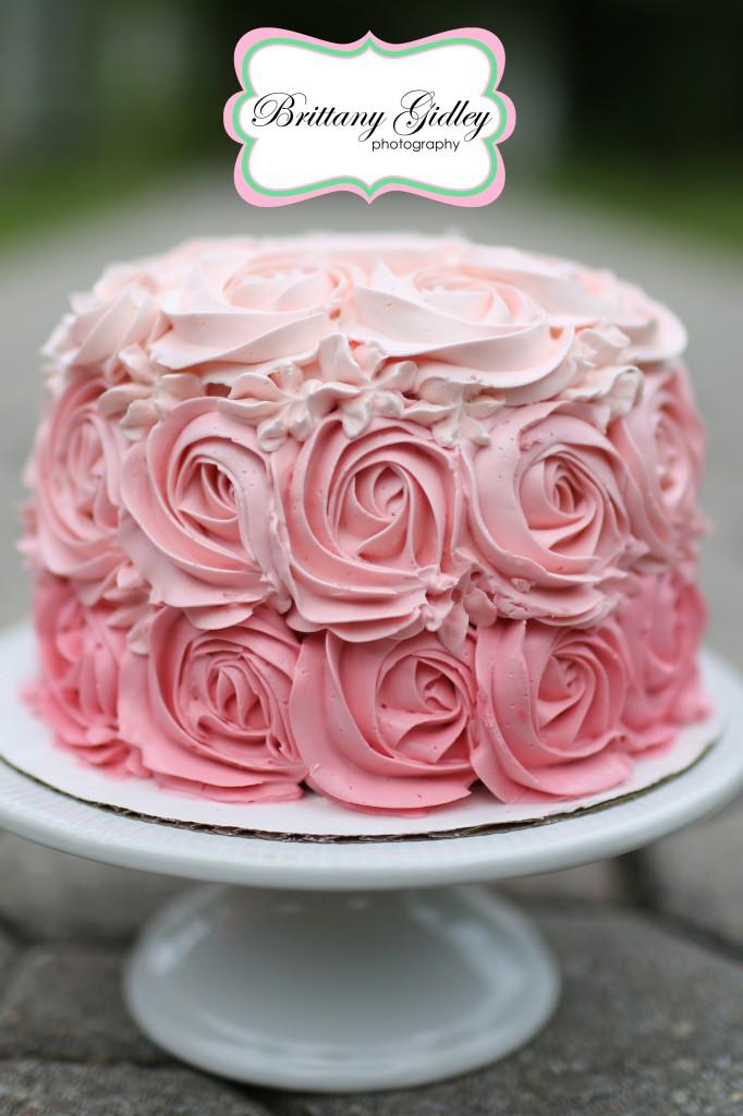 Professional Cake Smash Photography   Brittany Gidley Photography LLC