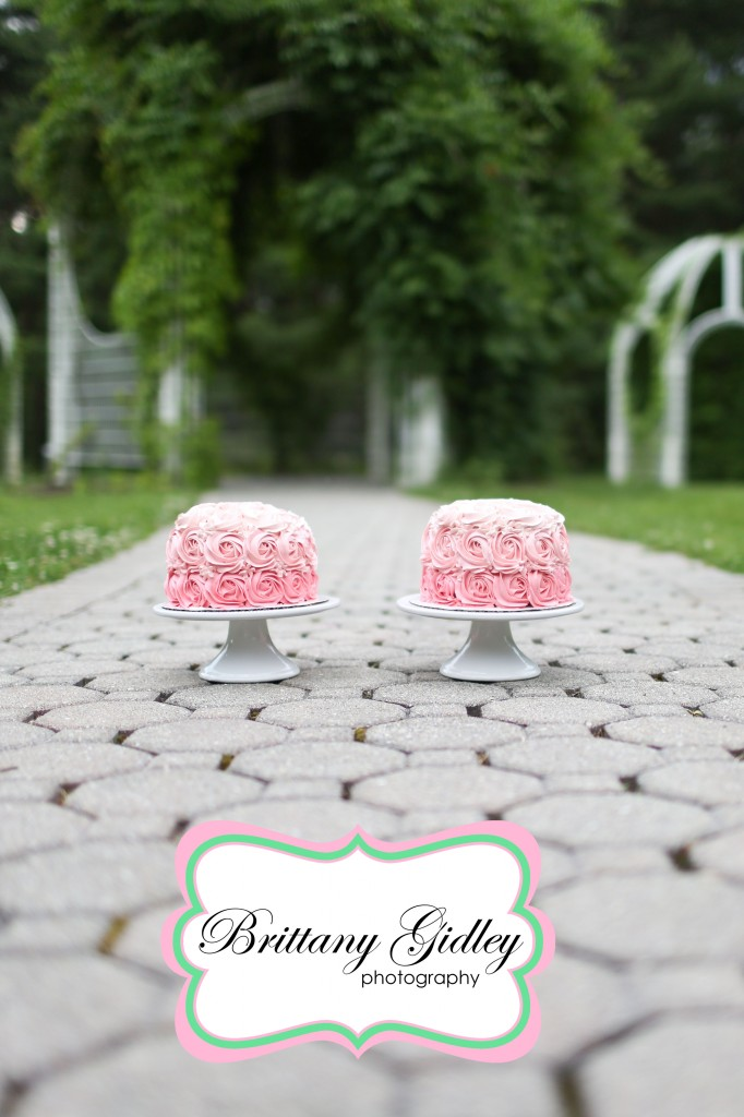 Professional Cake Smash Photography | Brittany Gidley Photography LLC