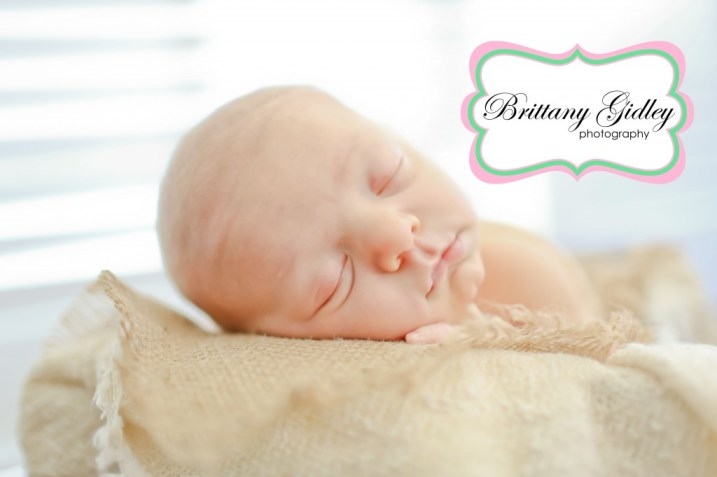 Newborn Baby In Basket | Brittany Gidley Photography LLC