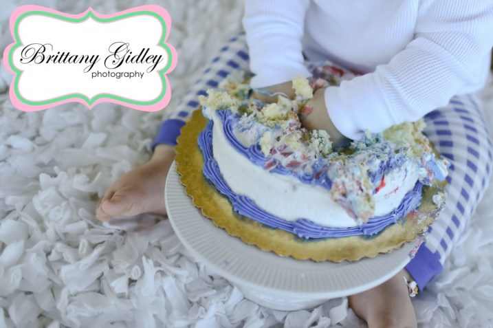 12 Month Baby Cake Smash | Brittany Gidley Photography LLC