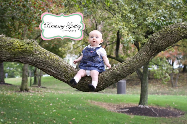 3 Month Old Baby On Branch | Brittany Gidley Photography LLC