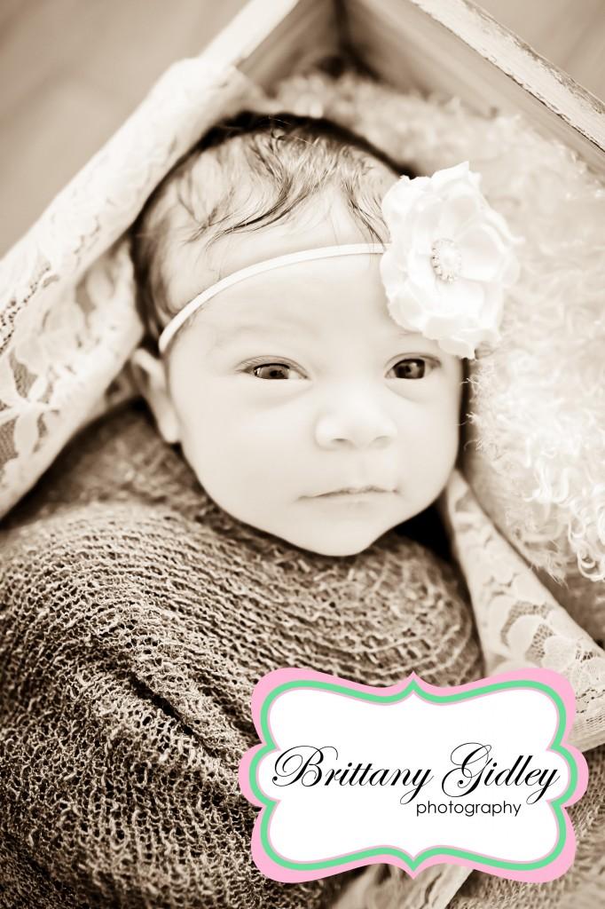 Bratenahl Newborn Photography | Brittany Gidley Photography LLC