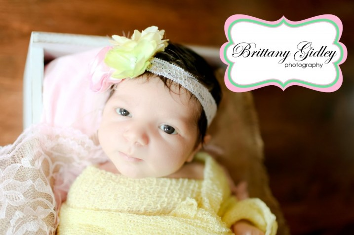 Beachwood Newborn Photographer | Brittany Gidley Photography LLC