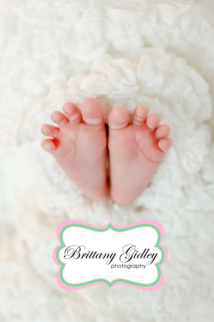 Chagrin Falls Newborn Photographer | Brittany Gidley Photography LLC