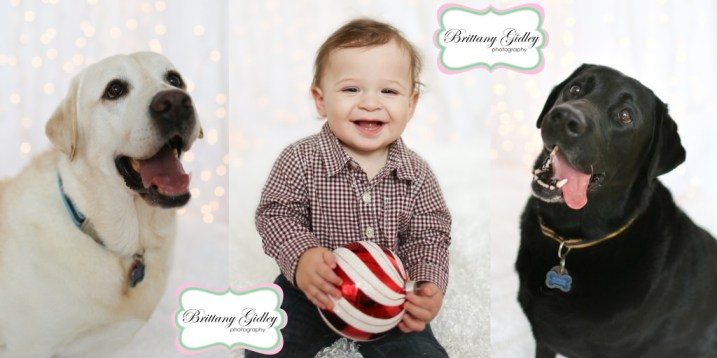 Cleveland's Top Photographer | Brittany Gidley Photography LLC