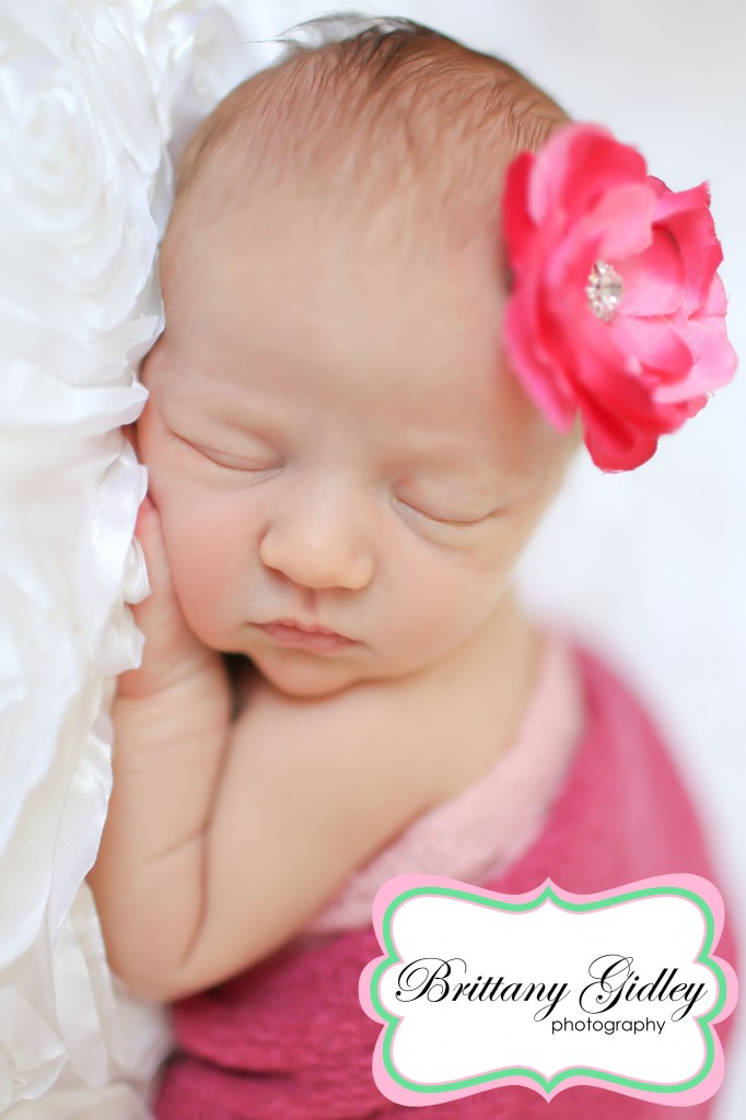 Canton Newborn Photography | Brittany Gidley Photography LLC