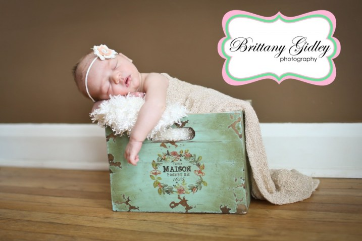 Canton Newborn Photographer | Brittany Gidley Photography LLC